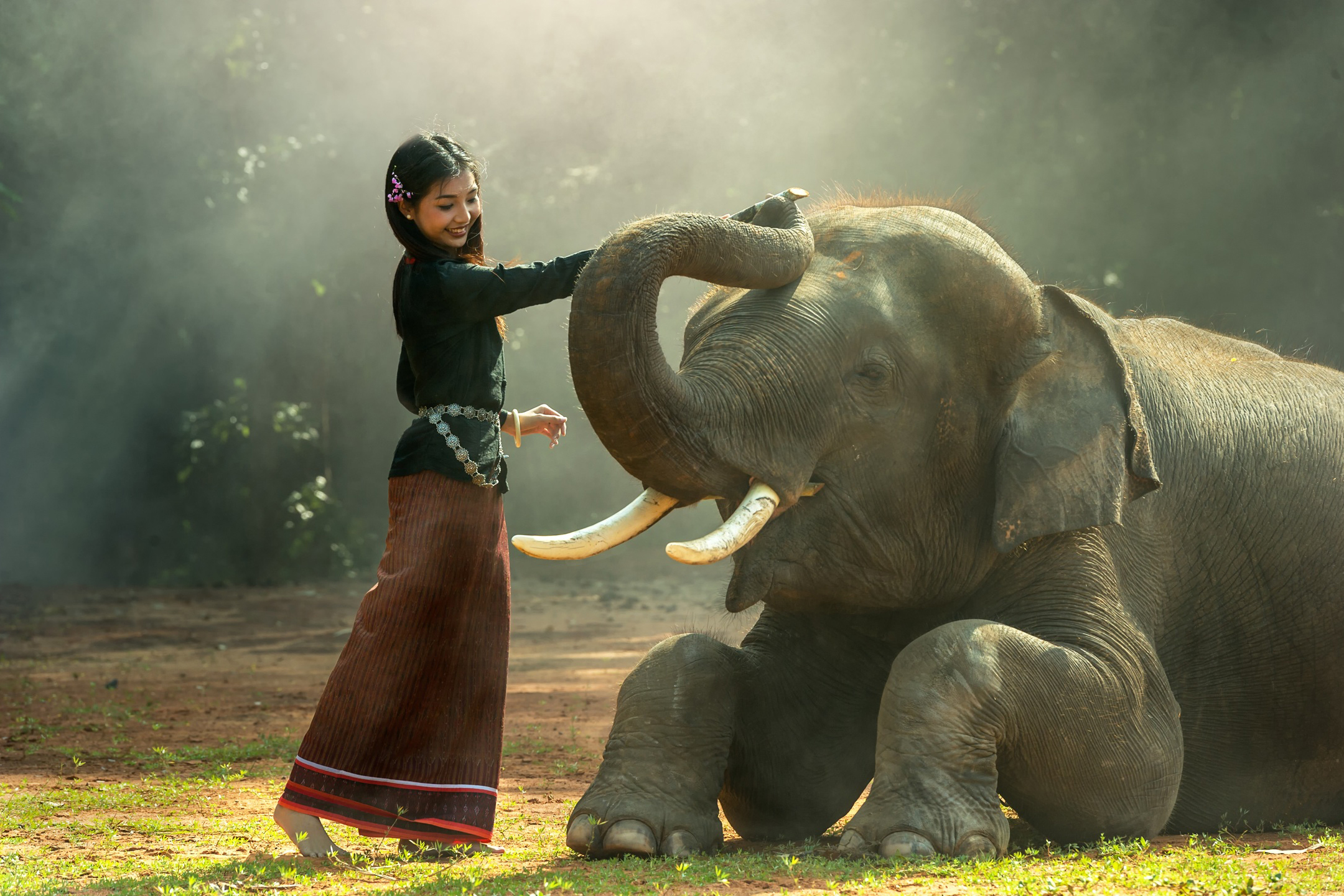 Mujer tocando elefante en camboya