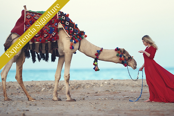 vista lateral de una joven mujer en la playa posando cerca de un camello, cultura árabe, foto tomada al borde del mar.