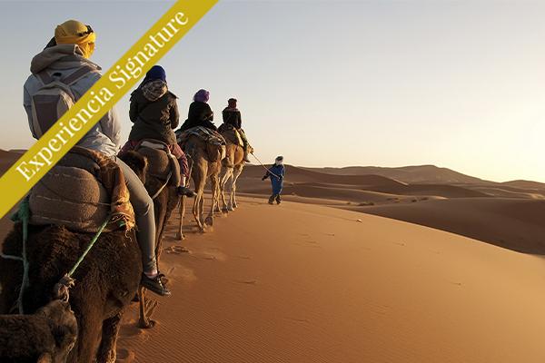 Dubái - Paseo por el desierto Sig
