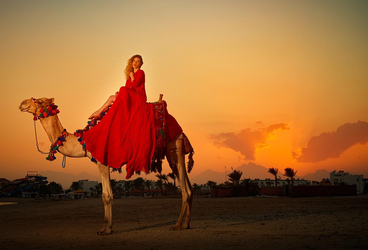 viaje en el safari Dubái