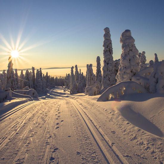 aventura frio esquí de fondo amanecer Finlandia