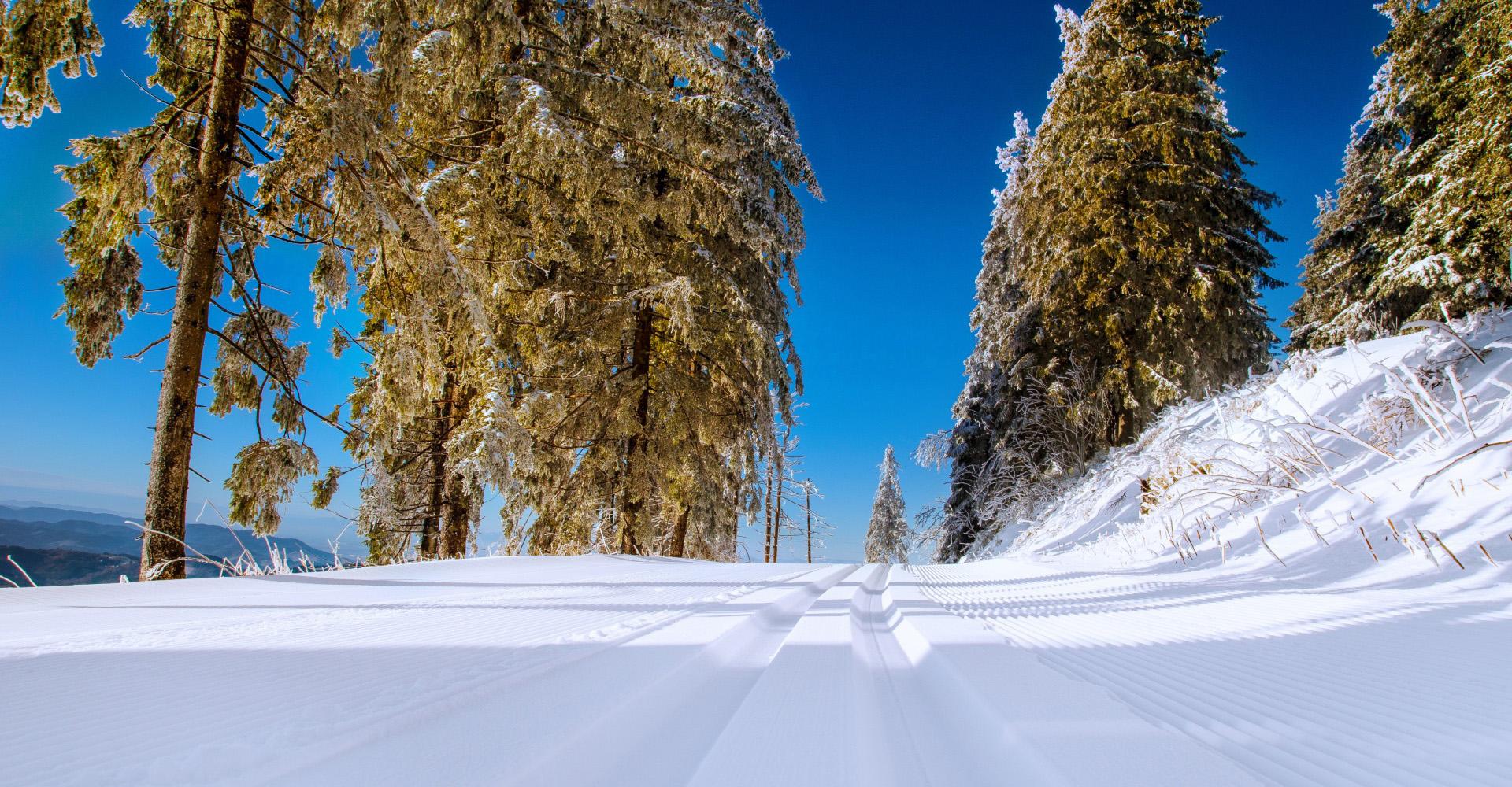 paisaje de carreteras nevadas en invierno Nieve
