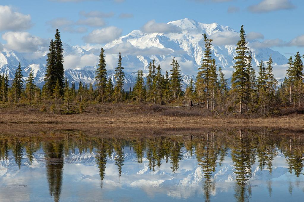 parque nacional mount mckinley denali alaska