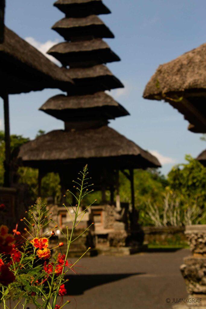 Taman Ayun Templo Jardin