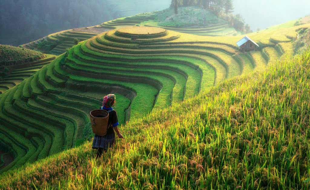 Terrazas de Arroz en Guilin, China