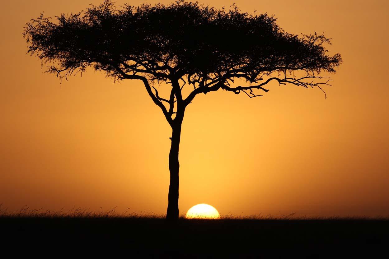 La puesta de sol en Masai Mara Kenia